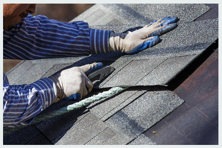 Questions to Ask When You're Considering Shingle Roofing